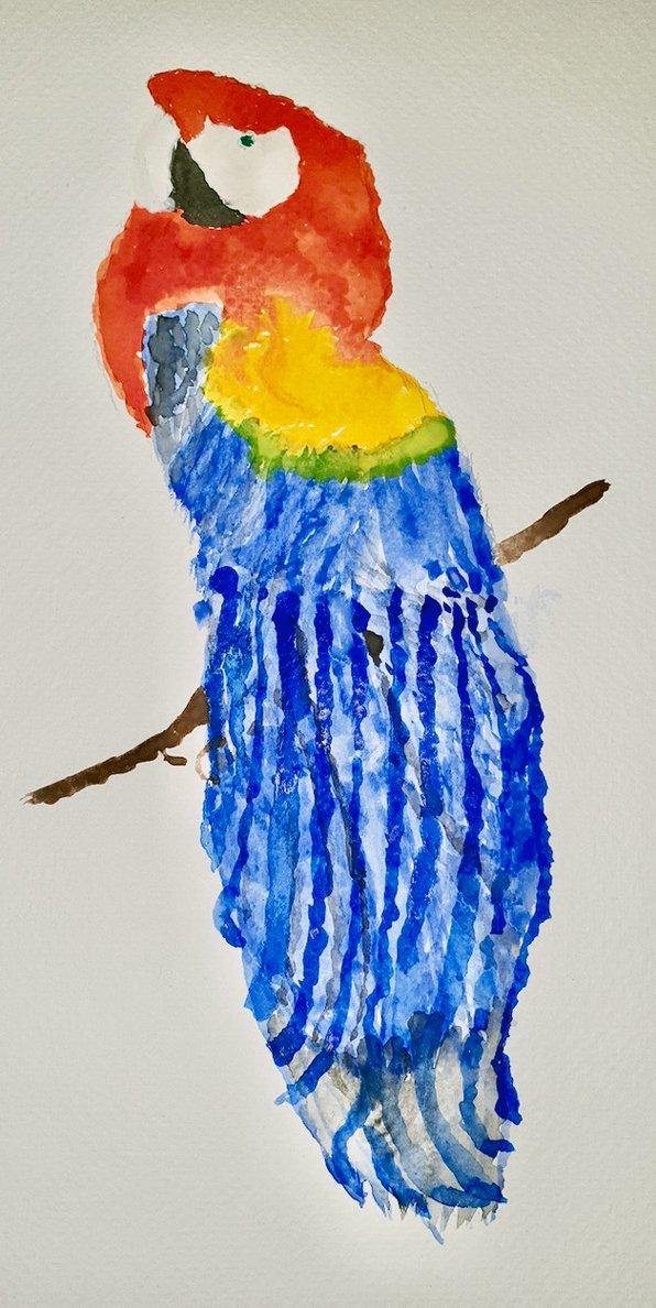 tamblin-parrot