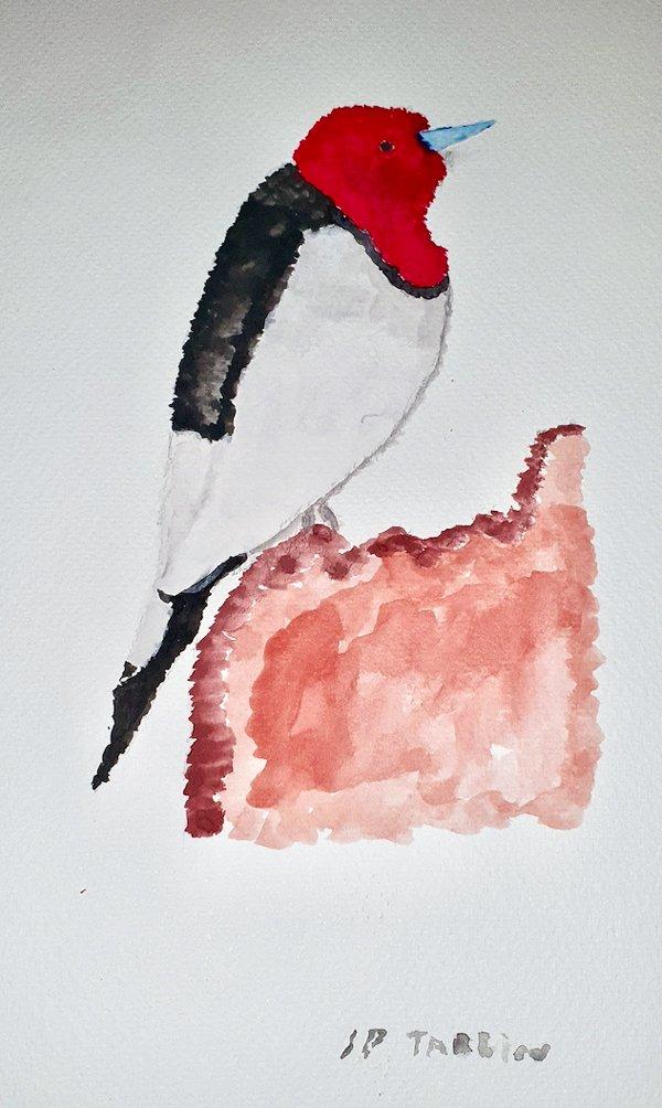 tamblin-woodpecker