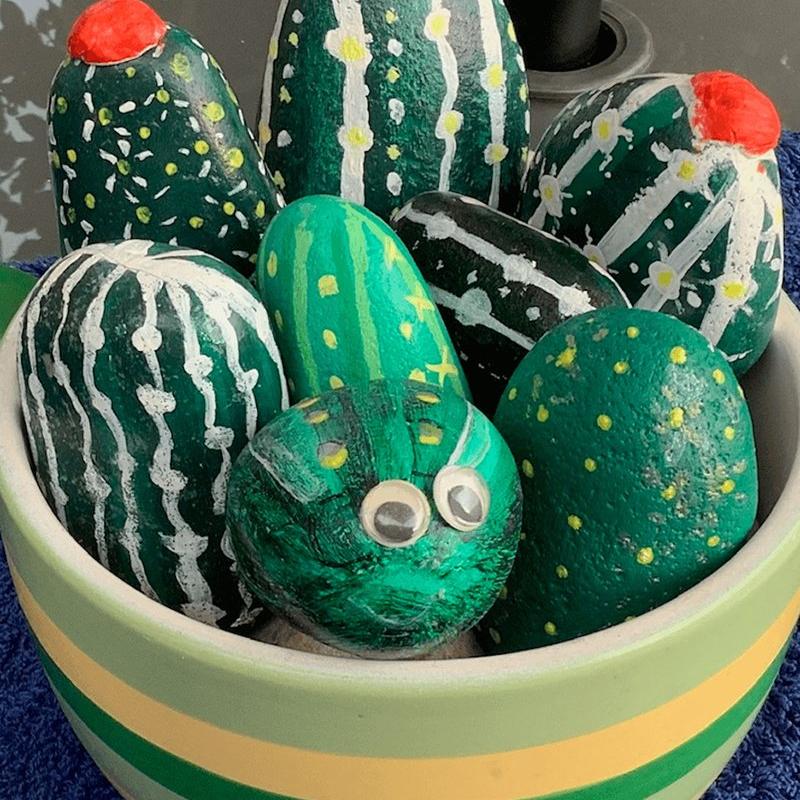 cactus-pebbles-2_1